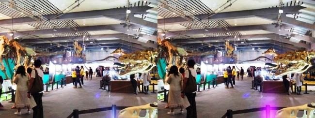 メガ恐竜展2017 会場全景(交差法)