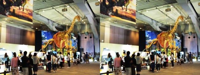 メガ恐竜展2017 ZONE9 トゥリアサウルス骨格復元①(平行法)