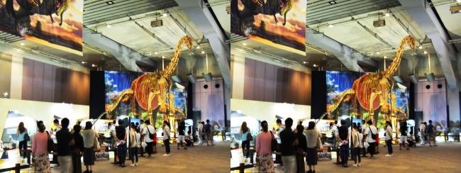 メガ恐竜展2017 ZONE9 トゥリアサウルス骨格復元①(交差法)