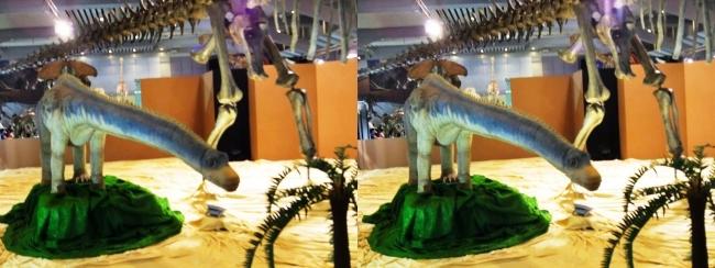 メガ恐竜展2017 ZONE4 バロサウルス生体復元ロボット(平行法)