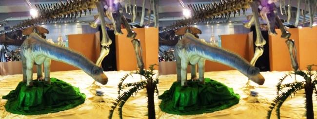 メガ恐竜展2017 ZONE4 バロサウルス生体復元ロボット(交差法)