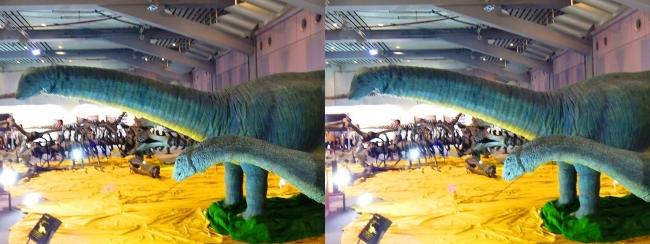 メガ恐竜展2017 ZONE4 アパトサウルス親子生体復元ロボット(平行法)