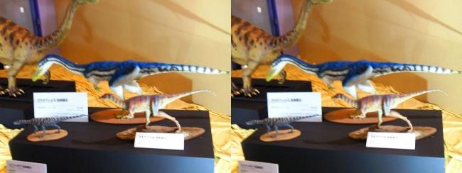 メガ恐竜展2017 ZONE3 コエロフィシス・エオラプトル生体復元(平行法)