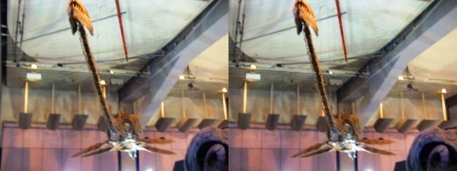 メガ恐竜展2017 ZONE1 タラソメドン骨格復元(交差法)