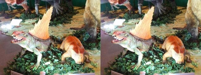メガ恐竜展2017 ZONE1 ディメトロドン・リストロサウルス生体復元(平行法)