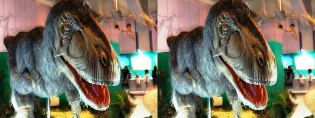 メガ恐竜展2017 ZONE1 ユティランヌス生体復元(平行法)
