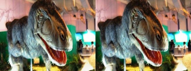 メガ恐竜展2017 ZONE1 ユティランヌス生体復元(交差法)