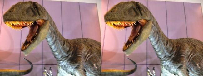 メガ恐竜展2017 ZONE1 カルカロドントサウルス生体復元(平行法)
