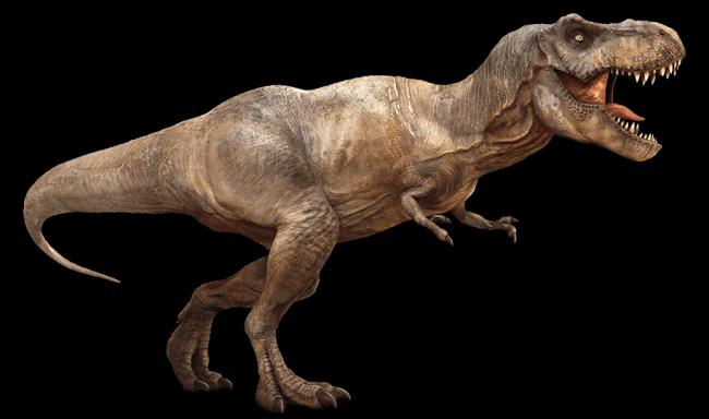 ティラノサウルス 復元画
