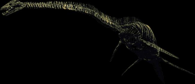タラソメドン 全身復元骨格