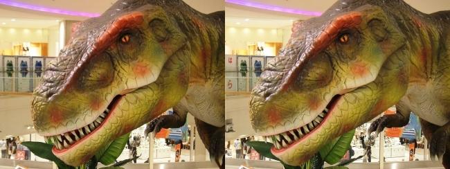 恐竜博 in あべのキューズモール ティラノサウルス③(平行法)