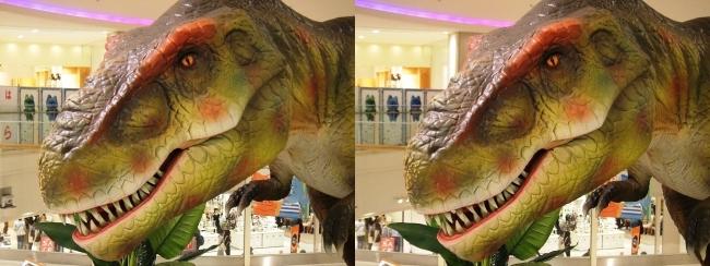 恐竜博 in あべのキューズモール ティラノサウルス③(交差法)