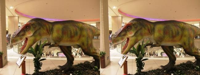 恐竜博 in あべのキューズモール ティラノサウルス②(平行法)