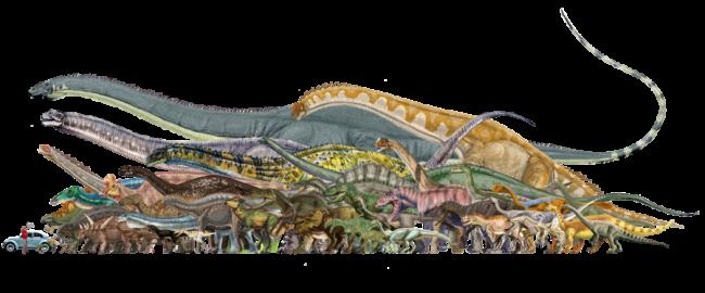 アンフィコエリアスと他の恐竜との大きさ比較