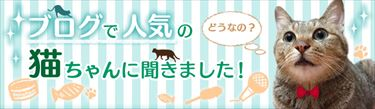 main_02_R.jpg