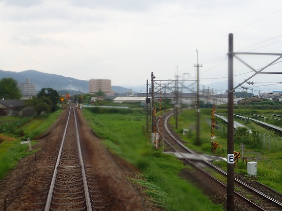 P8140217.jpg