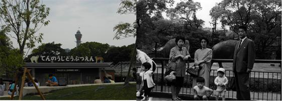 左:現在の天王寺動物園入口 右:50年前の園内