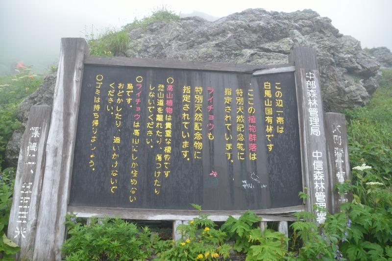 白馬岳 (58)