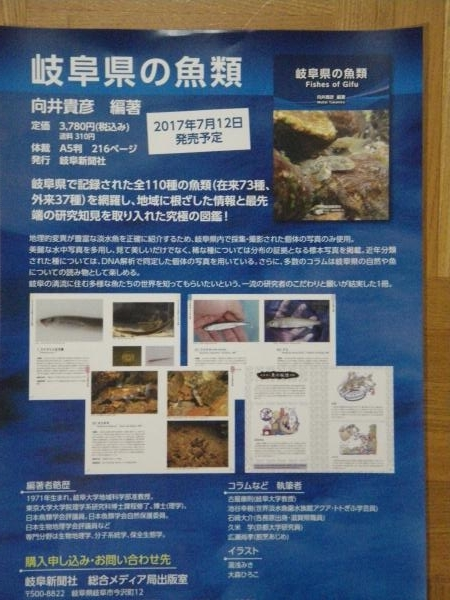 岐阜県の魚類