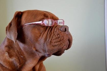 目が悪いのにメガネをかけない!目が良くなる?悪くなる?