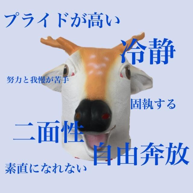 S__28434446.jpg