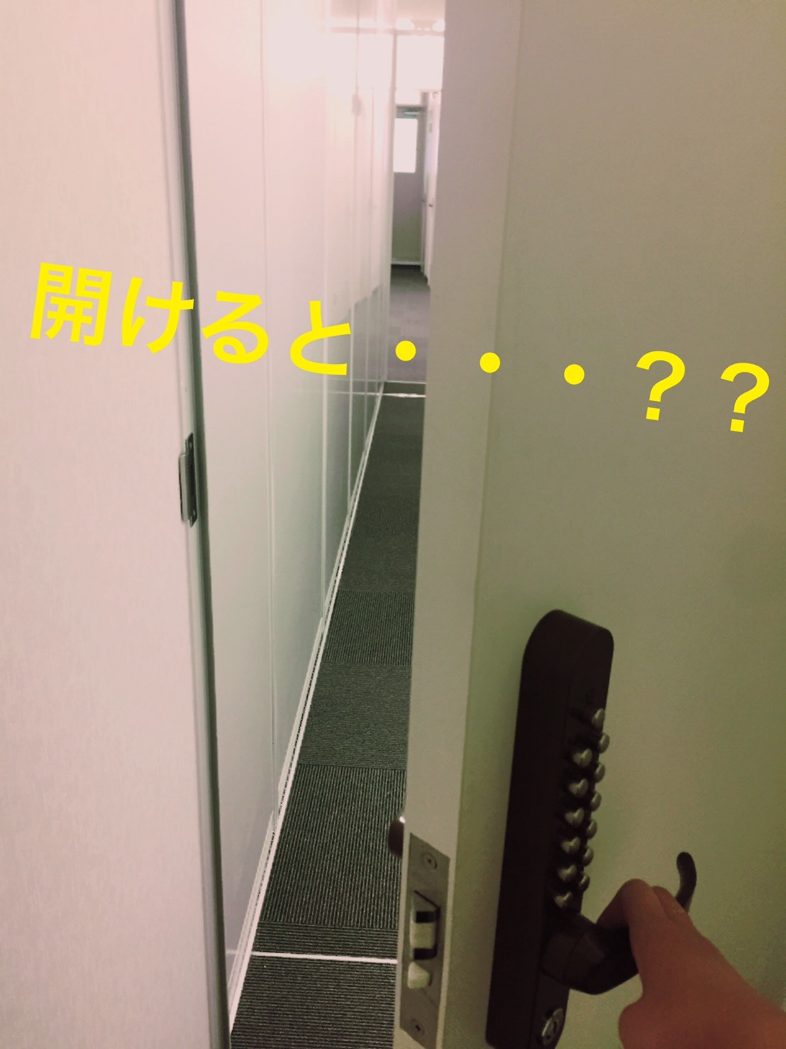 S__40837129.jpg
