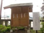 浅間神社(甲斐)山宮遥拝・石・松06