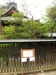 浅間神社(甲斐夫婦梅01