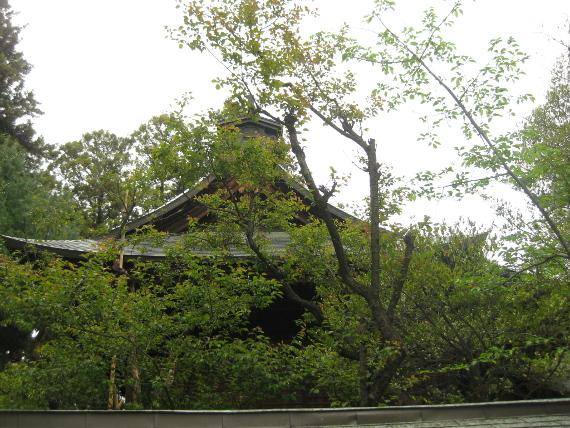浅間神社(甲斐夫婦梅03