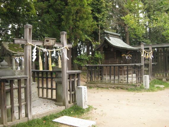 浅間神社(甲斐夫婦梅09