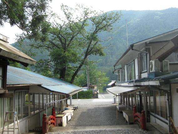 秋葉神社・下社23