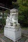 近江神宮・本殿15