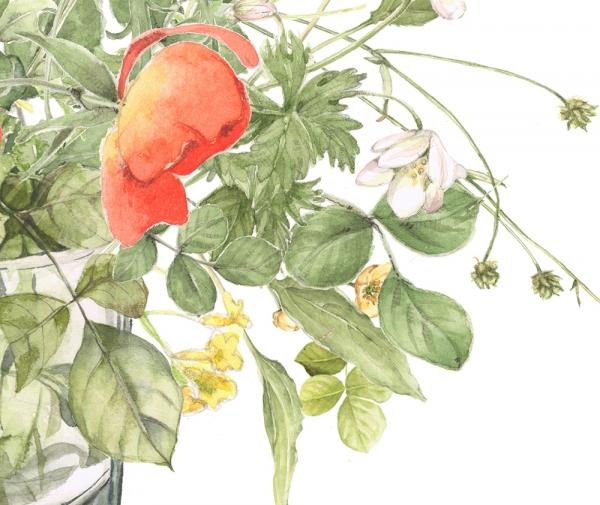 flower129c.jpg