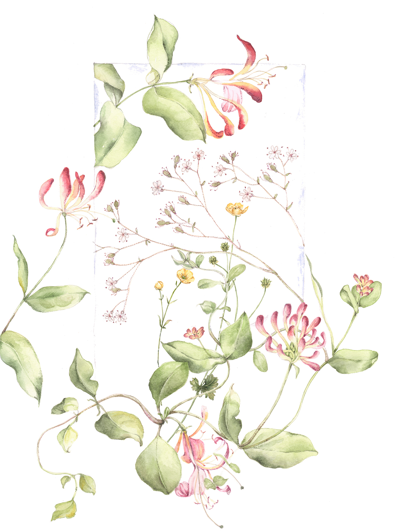 flower133asmall.jpg