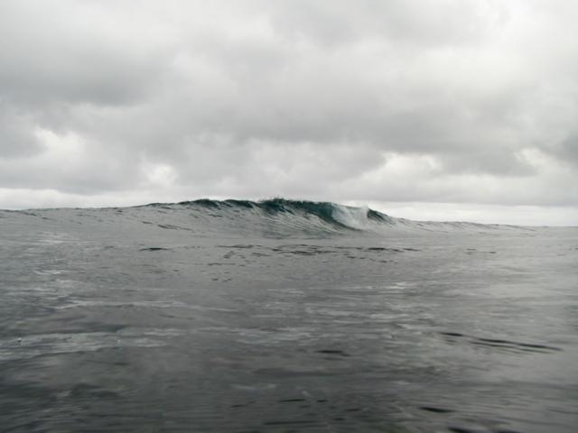 20175163.jpg