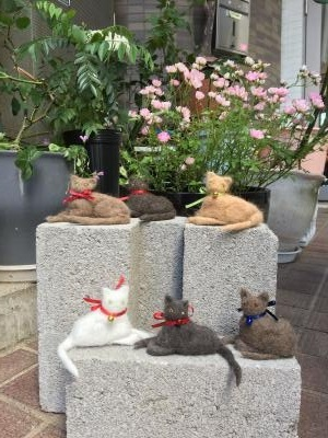 猫毛フェルト人形中級集合写真☆