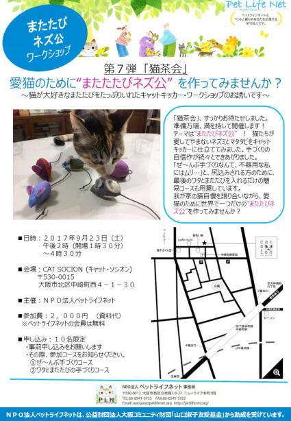 猫茶会第7弾_1☆