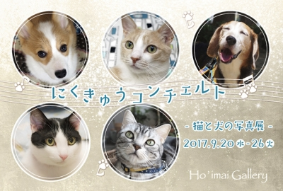 2017にくきゅうコンチェルト_1☆