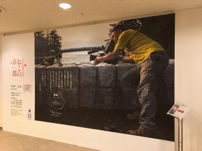 岩合さん写真展「ねこの京都」2☆