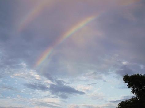 5虹 DSCF0991