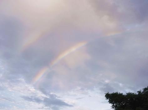 3虹 DSCF0989