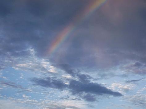 2虹 DSCF0992