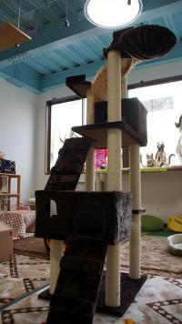 ニャットタワーの組み立て! その6 1