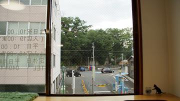 窓に張り付く猫ハンモック! その1 4
