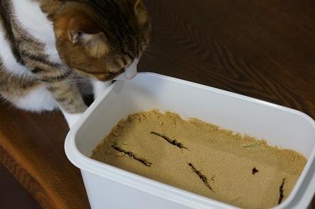 米ぬか1kgで作ったぬか床