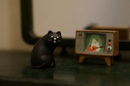 フツーに猫座りしてる黒猫っス。