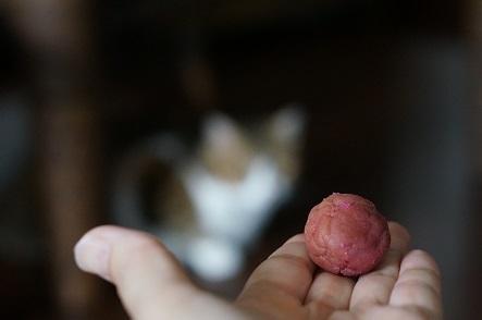 産直で買った地元の梅と天草の塩のコラボ梅干し