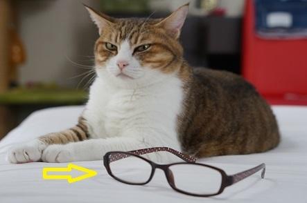 つまり老眼鏡