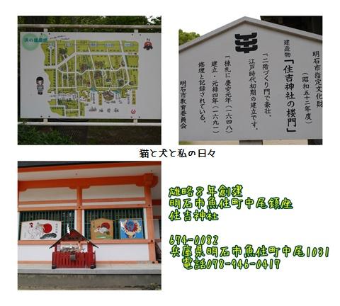 20170516-003.jpg