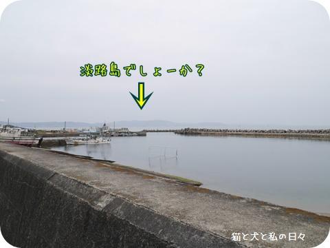 20170516-006.jpg